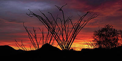Photograph - Salero Sunset 9 by Tom Daniel