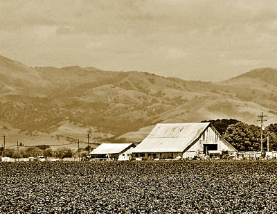 Salinas Valley Farm Art Print by Laurie Ehlke