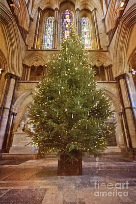 Photograph - Salisbury Cathedral Christmas Tree by Terri Waters
