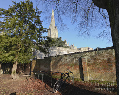Photograph - Salisbury Cathedral Wall by Terri Waters
