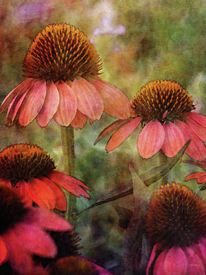 Photograph - Salmon Coneflowers 3991 Idp_2 by Steven Ward