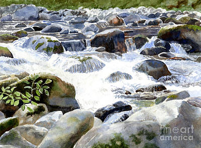 Salmon Wall Art - Painting - Salmon River Falls And Rocks by Sharon Freeman