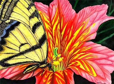 Butterfly Painting - Salpliglossis by Catherine G McElroy