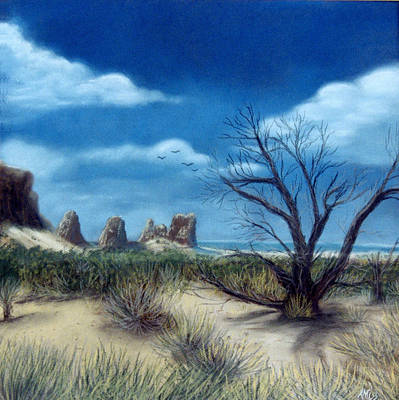 Salt Cedar At Arches Art Print