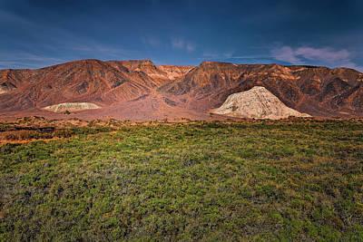 Photograph - Salt Creek, Ca by Peter Lakomy