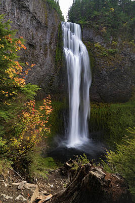 Photograph - Salt Creek Falls by Brian Bonham