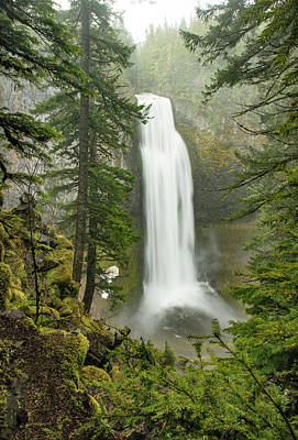 Photograph - Salt Creek Falls by Gordon Ripley