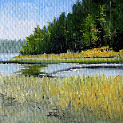 Painting - Salt Creek by Nancy Merkle