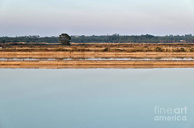 Photograph - Salt Evaporation Ponds In Ria Formosa by Angelo DeVal