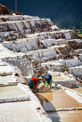 Photograph - Salt Harvest by Scott Kemper