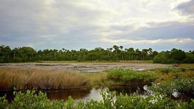 Photograph - Salt Marsh At Low Tide by Carol Bradley