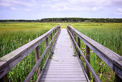 Photograph - Salt Marsh Boardwalk by Luke Moore