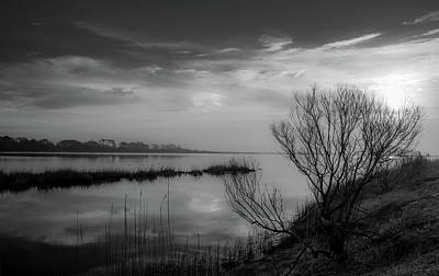 Photograph - Salt Marsh, Early Morning by Steven Ainsworth