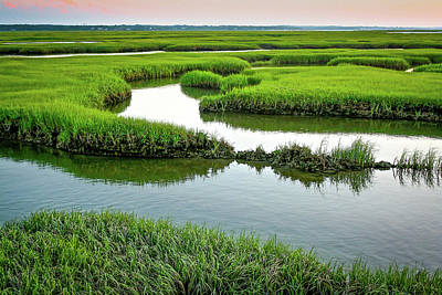 Photograph - Salt Marsh by Jim Gillen