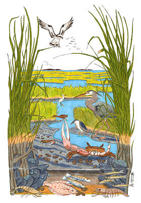 Egret Drawing - Salt Marsh by John Meszaros