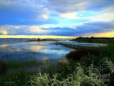 Photograph - Salt Marsh by Shelia Kempf