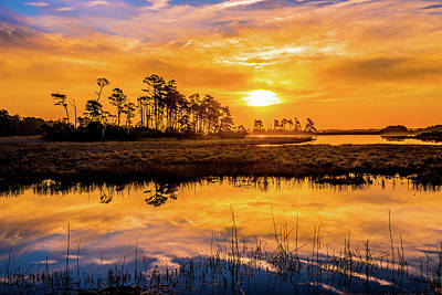 Photograph - Salt Marsh Sunrise IIi by Steven Ainsworth