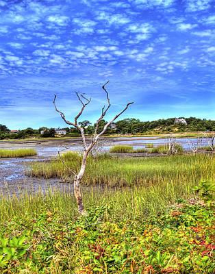 Photograph - Salt Marsh by Tammy Wetzel