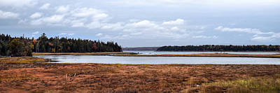 Photograph - Salt Pond - Bar Harbor - Maine by Geoffrey Coelho