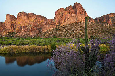 Photograph - Salt River Reflections With Ironwood Blooms by Dave Dilli