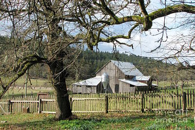 Photograph - Salt Spring Farm by Frank Townsley