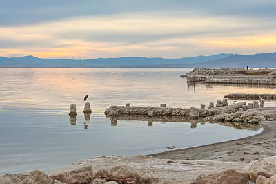 Photograph - Salton Sea by Peter Dyke