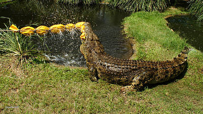 Photograph - Saltwater Crocodile 13 by Gary Crockett