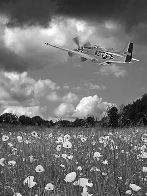 Photograph - Salute To The Brave In Black And White - P-51 Flying Over Poppy Field by Gill Billington