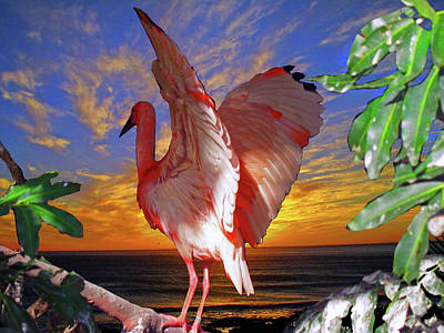 Of Birds Photograph - Salute To The Sun by Michael Durst