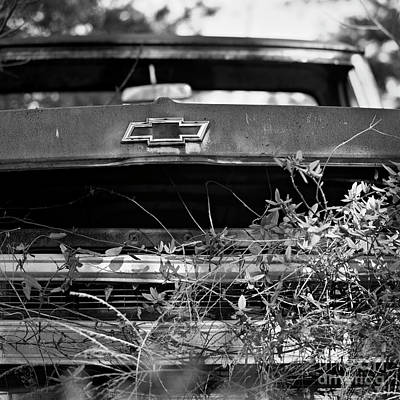 Photograph - Salvage 48 by Patrick M Lynch