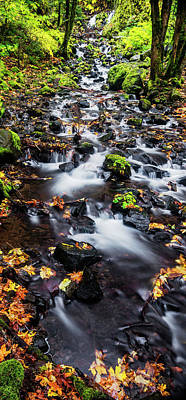 Photograph - Salvation Creek In Columbia River Gorge by Vishwanath Bhat
