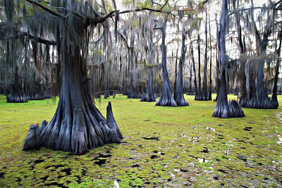 Photograph - Salvinia Floor Covered Forest by Lana Trussell
