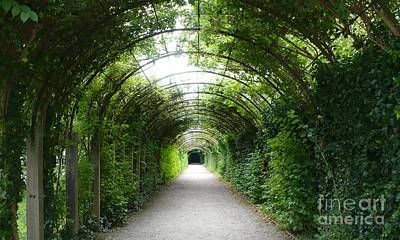 Lights In Tunnel Photograph - Salzburg Garden Arbor by Carol Groenen