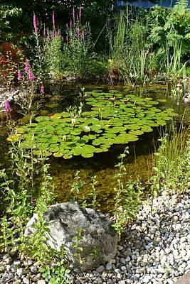 Photograph - Salzburg Pond by Carol Groenen