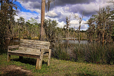 Photograph - Sam Houston Jones State Park 2 by Judy Vincent