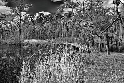 Photograph - Sam Houston Jones State Park Bridge Bw by Judy Vincent