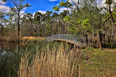Photograph - Sam Houston Jones State Park Bridge by Judy Vincent