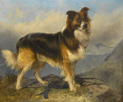 Richard Ansdell Painting - Sammie by Richard Ansdell