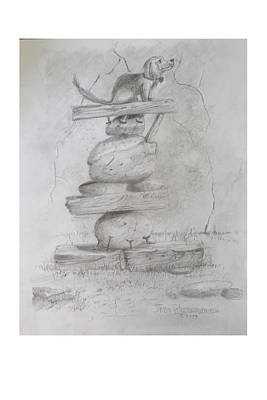 Drawing - Sammy Balancing by Jim Hubbard