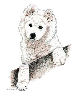 Animals Drawings - Samoyed Puppy by Kathleen Sepulveda