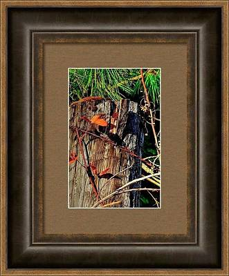 Photograph - Sample Leaf Wire Framed by Jerry Sodorff