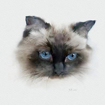 Painting - Samson - Persian Cat by Bamalam  Photography