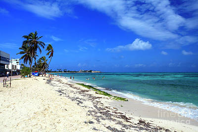 San Andres Island Beach View Print by John Rizzuto
