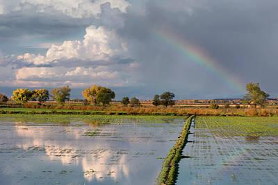 Photograph - San Antonio Rainbow by Kathleen Bishop