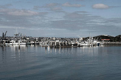 Photograph - San Diego Fishing Fleet by William Kimble