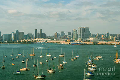 Photograph - San Diego Marina by Rima Biswas