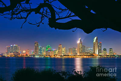 San Diego Skyline From Bay View Park In Coronado Art Print