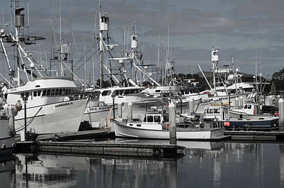 Photograph - San Diego Tuna Fleet by William Kimble