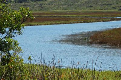 California Photograph - San Elijo Lagoon by Jean Booth