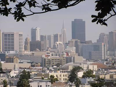 Photograph - San Francisco by Alfred Ng